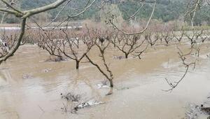 Bilecikte şiddetli yağış Tarım arazileri sular altında kaldı