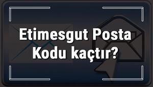 Etimesgut Posta Kodu kaçtır Ankaranın ilçesi Etimesgutun ve mahallelerinin Posta Kodları