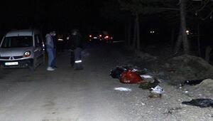 Ankarada boş arazideki çöp poşetlerinde çok sayıda ölü köpek bulundu