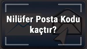 Nilüfer Posta Kodu kaçtır Bursanın ilçesi Nilüferin ve mahallelerinin Posta Kodları