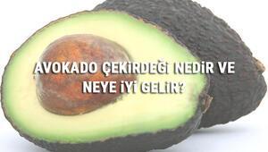 Avokado Çekirdeği Nedir Ve Neye İyi Gelir Avokado Çekirdeği Faydaları