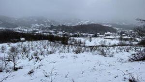 Bartının yükseklerinde kar yağışı