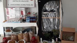 Serik'te uyuşturucu madde ve kaçak alkol operasyonu