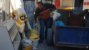 Caniler Yavru kedileri poşetle çöpe attılar