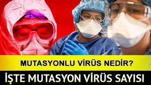Varyant ne demek Mutasyon koronavirüs vaka sayısı ne kadar Sağlık Bakanı Fahrettin Koca açıkladı