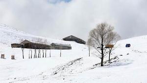 Son Dakika: Muşun yüksek kesimlerindeki köyler beyaza büründü