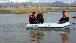 Van Gölünde yasağın ilk gününde, 3 ton inci kefali ele geçirdi