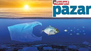 Balık tükettikçe hem sağlığımız hem gezegenimiz tükeniyor olabilir mi