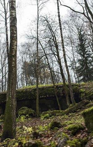 Turizme açılması tartışma yarattı Hitler'in sığınağı…