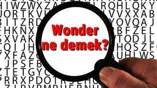 Wonder ne demek? İngilizce Wonder kelimesinin Türkçe anlamı nedir?