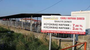 Keşan'da, canlı hayvan pazarı koronavirüs nedeniyle kapatıldı