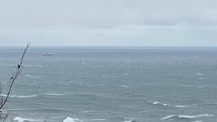 Vali duyurdu: Bartın'da gemi battı