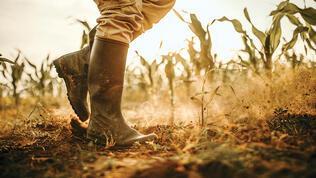 9.8 milyon hektarda kuraklığa karşı çalışma