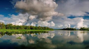 Amazon'un damarlarında yolculuk