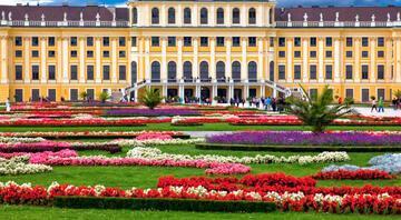 Troçki'nin oturduğu yerden Viyana...