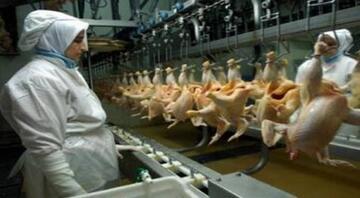 Brezilyalı gıda devi Banvite talip
