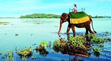 Masalla gerçek arasında: Sri Lanka