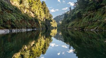 Yeni Zelandanın canlı statüsüne giren nehri: Whanganui