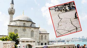 Şemsi Ahmet Paşayı çatlatan proje durdu