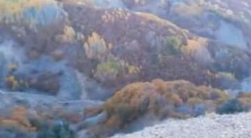 Munzur Dağlarında sıcak çatışma: 4 terörist öldürüldü