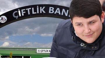 Çiftlik Bankta akıl almaz rakam Sadece İstanbulda bin 637 kişi yeniden dolandırıldı