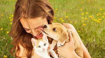 Evcil hayvan sahibi olmak isteyenlere her duruma hazırlayıcı 6 öneri