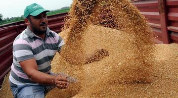 Cumhurbaşkanı Erdoğan'dan çiftçilere müjde