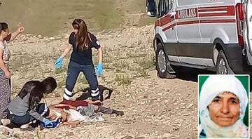 Elazığda korkunç olay Köpeklerin saldırısına uğrayan yaşlı kadın öldü