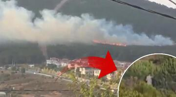 Pendikteki orman yangınıyla ilgili bir kişi gözaltında