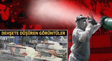 Corona Virüsünde korkulan oldu DSÖ açıkladı...