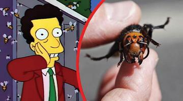 """Simpsonlar ABD'deki """"Katil arıları"""