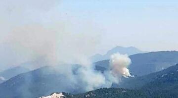 Burdurda orman yangını