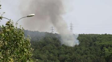 Aydosta orman yangını