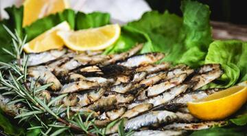T2 katil lenfositlerinin sayısını değiştiriyor D vitamini güneşten sonra en çok balıkta