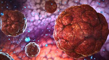 Mutasyon endişesi büyüyor… Koronavirüs artık daha mı tehlikeli