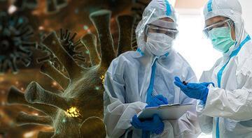 Koronavirüs mutasyonu: En çok merak edilen 4 soru 4 yanıt