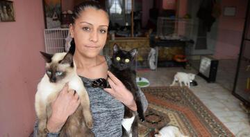 Yavru kedileri poşete koyup ölüme terk ettiler
