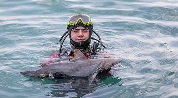 Mersinde atıl durumdaki ağlara takılan köpek balığı yavrusu öldü