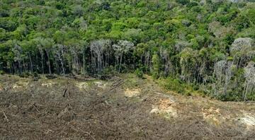 Akılalmaz olay: Amazon ormanlarını Facebooktan satışa çıkardılar