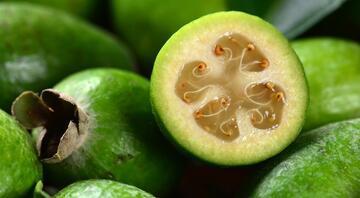 Yeni Zelanda'yı ikiye bölen meyve