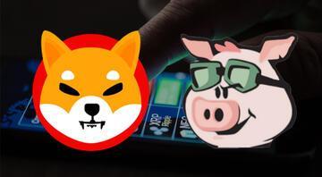 Kripto paralarda Shiba Inu ve Pig Finance rüzgarı