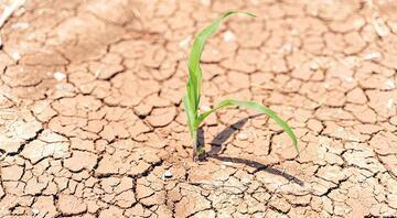 Tarımsal kuraklık tehlikesi