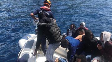 Yunanistan tarafından Türk kara sularına itilen 74 sığınmacı kurtarıldı