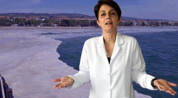 Müsilaj kâbusu sürüyor Marmara Denizinde yüzülebilir mi Bu soruya en net yanıt...