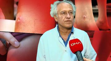İstanbulda sivrisinek tehlikesi Prof. Dr. Yılmaz türünü açıkladı: Asya Kaplan Sivrisineği kâbusu