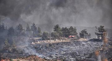 Mersinde orman yangını Farklı noktalara sıçradı, evler boşaltıldı Bakan Pakdemirliden ilk açıklama geldi