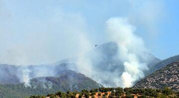 Hatayın Hassa ilçesindeki yangın iki gündür devam ediyor