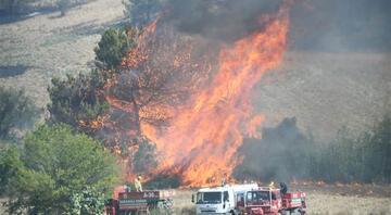 Adana Sarıçamda orman yangını