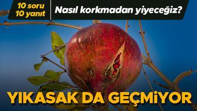Kabuğundan bile içine bulaşıyorsa, nasıl korkmadan meyve yiyeceğiz 10 SORU 10 YANIT