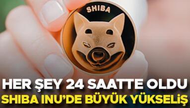 24 saatte dudak uçuklatan kazanç Herkes Shiba Inudeki yükselişi konuşuyor
